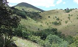 Stamvrug-Ridge-Main